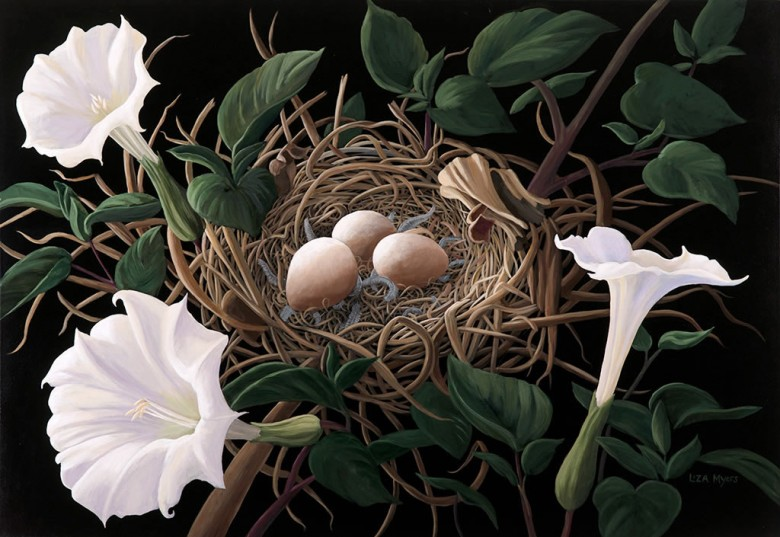 Towhee Nest with Jimson Weed