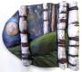 Thumbnail: Moonlit Birches