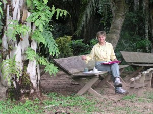 Plein air sketches in the Peruvian Amazon waiting for the giant river otters to return to my side of their oxbow lake.